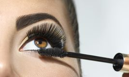 长的鞭子特写镜头 应用在她的眼睛的美丽的妇女染睫毛油 库存图片