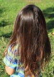 长的头发 库存图片