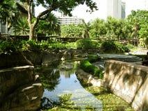 长的绕池塘,绿色地带购物中心公园,马卡蒂,菲律宾 库存图片