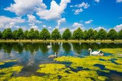 长的水运河 库存图片