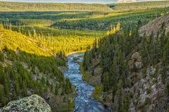 长臂猿河在黄石国家公园 图库摄影