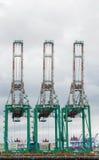 长荣海运公司在Los Ang口岸的容器起重机  免版税库存图片