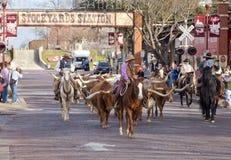 长角牛在沃思堡牲畜饲养场的牛驱动 库存图片
