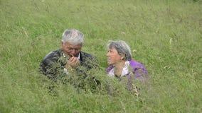 长辈夫妇与坐在绿草的灰色头发的 股票录像