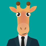 长颈鹿具体化佩带的衣服 免版税库存照片