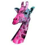 长颈鹿剪影的头 库存照片