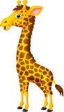 长颈鹿动画片 库存照片