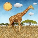 长颈鹿在徒步旅行队域被回收的纸背景中 免版税库存照片