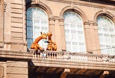 长颈鹿在赫尔辛基动物学学院的阳台的drinki茶 图库摄影