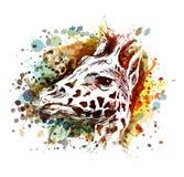 长颈鹿头的彩色插图 免版税库存图片