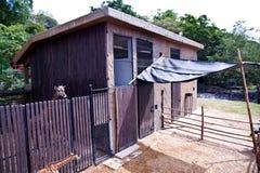 长颈鹿房子 库存照片
