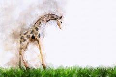 长颈鹿数字式绘画,水彩样式 免版税库存照片