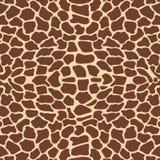 长颈鹿模式 免版税库存图片