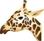 长颈鹿配置文件 库存例证