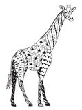 长颈鹿zentangle传统化了,导航,例证,徒手画的penci 免版税库存图片