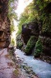 长满与在Chegem峡谷的青苔岩石 免版税库存照片