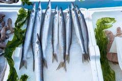 长嘴硬鳞鱼在市场上 免版税库存照片