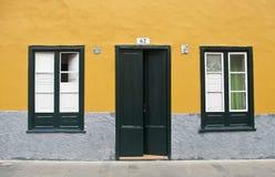 门和两个窗口在黄色墙壁上 图库摄影