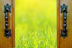 门户开放主义在绿草领域自然背景 免版税图库摄影