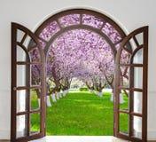 门户开放主义的曲拱庭院绽放在春天 免版税库存图片