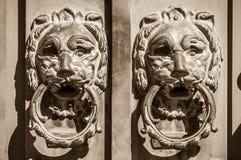 门把手保护入口的两头狮子 库存照片
