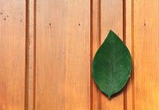 门木的泰国 库存图片