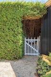 门英国庭院路径秘密 私有白色木门通过树篱 图库摄影