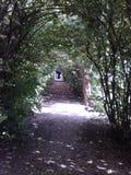 门英国庭院路径秘密 免版税库存照片