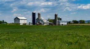 门诺派中的严紧派的农厂横向 免版税库存图片