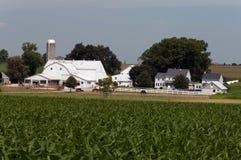 门诺派中的严紧派的农厂谷仓和设备001 库存图片