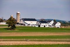门诺派中的严紧派的农场在晴朗的无云的天 图库摄影