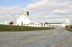 门诺派中的严紧派的农场 图库摄影