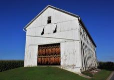 门诺派中的严紧派的玉米谷仓在宾夕法尼亚 库存图片
