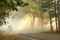 门诺派中的严紧派的薄雾早晨 免版税库存照片