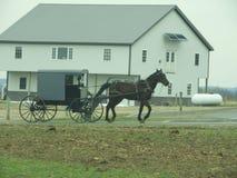 门诺派中的严紧派的马驾驶的儿童车 图库摄影