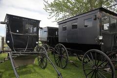门诺派中的严紧派的buggys, 免版税库存照片