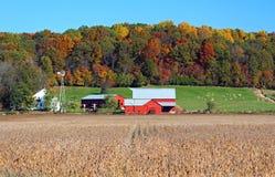 门诺派中的严紧派的农场在秋天 免版税库存照片