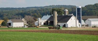 门诺派中的严紧派的农场 免版税图库摄影