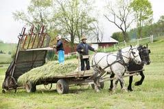 门诺派中的严紧派的夫妇在春天的准备他们的领域 免版税库存照片