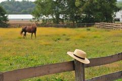 门诺派中的严紧派的帽子在马农场 免版税库存图片