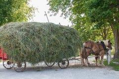 门诺派中的严紧派的干草无盖货车 库存图片