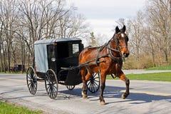 门诺派中的严紧派的马和支架 库存图片