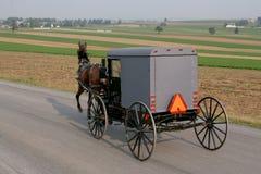 门诺派中的严紧派的马和支架 免版税库存图片
