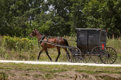 门诺派中的严紧派的马和黑儿童车 免版税库存图片