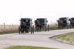门诺派中的严紧派的马和buggys 库存图片