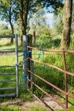 门锁了与从关闭的链和蓝色绳索 免版税库存照片