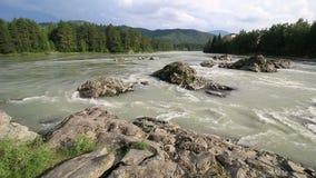 门限山河Katun。阿尔泰边疆区。 股票视频
