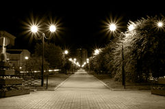闪亮指示运输路线晚上街道 免版税库存照片