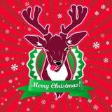 闪光和显示它与圣诞节问候的舌头鹿 库存照片