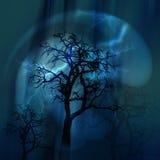 闪电在晚上 树点燃与一道闪电 免版税库存图片